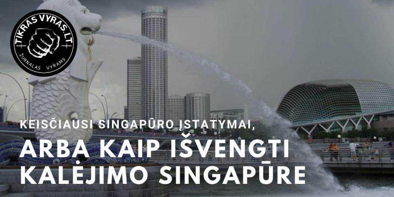Keisčiausi Singapūro įstatymai, arba kaip išvengti kalėjimo Singapūre